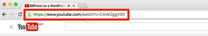 Embed YouTube video wordpress