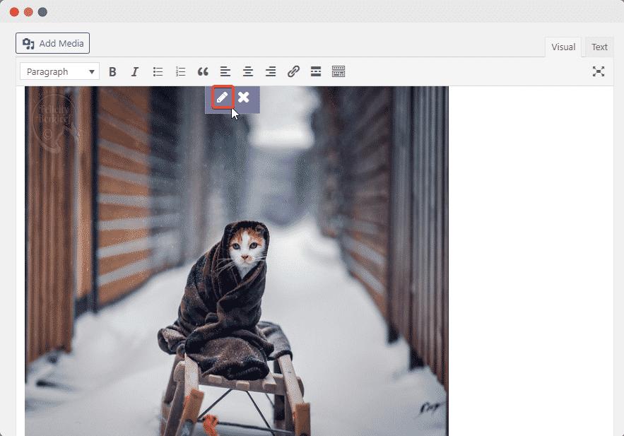 embed Flickr images