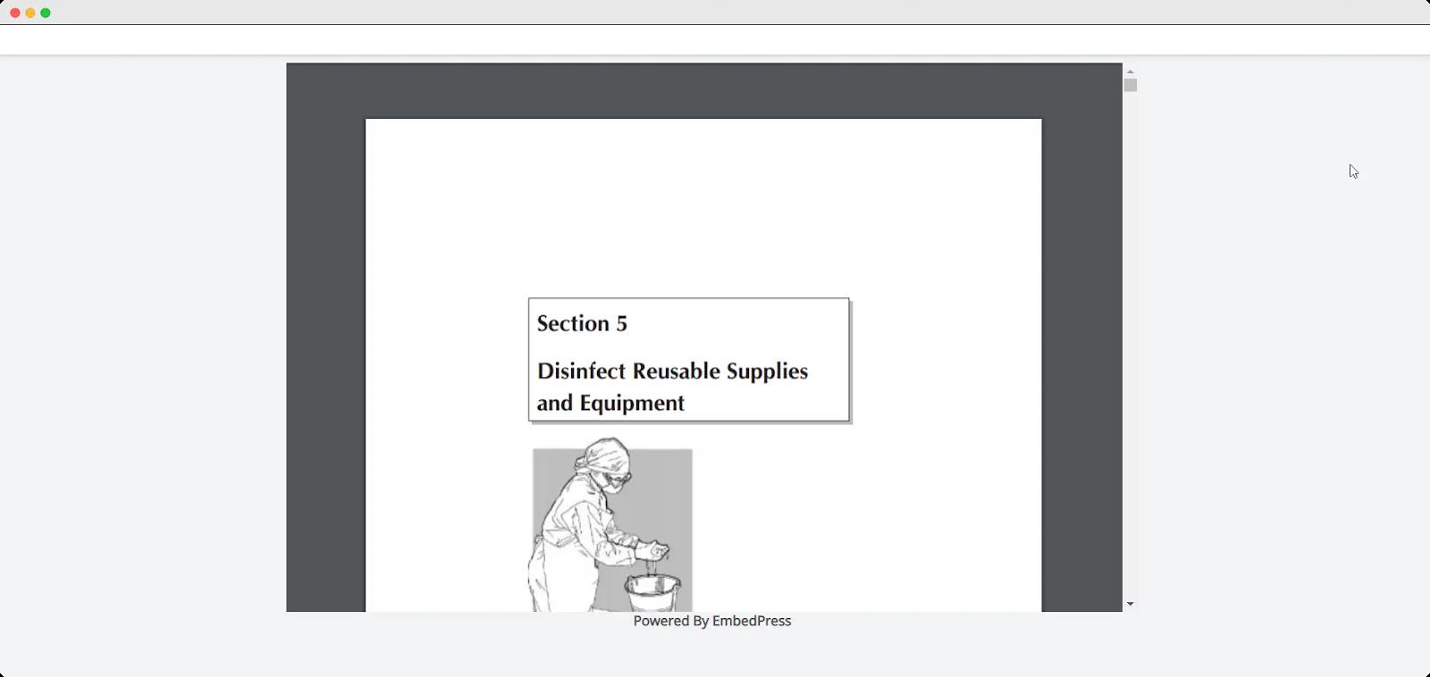 embed PDF files